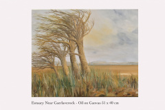 Estuary-Near-Caerlaverock
