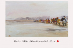 Flood at Liddles