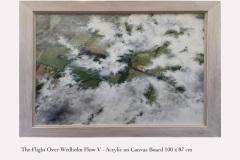 The Flight over Wedholm Flow